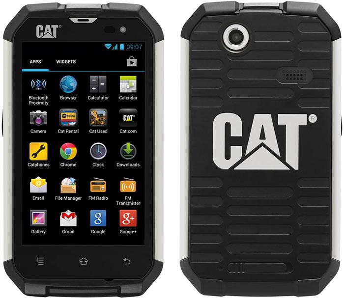 Cat_B15_