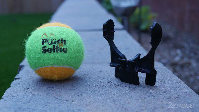 pooch-selfie-013